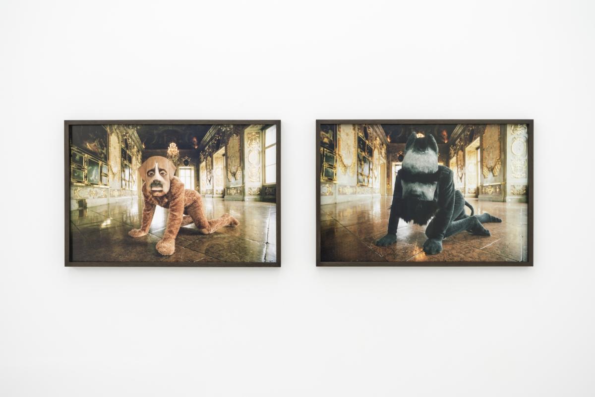 'A Dream of Linnaeu's Daughter' by Katarzyna Kozyra at ŻAK | BRANICKA