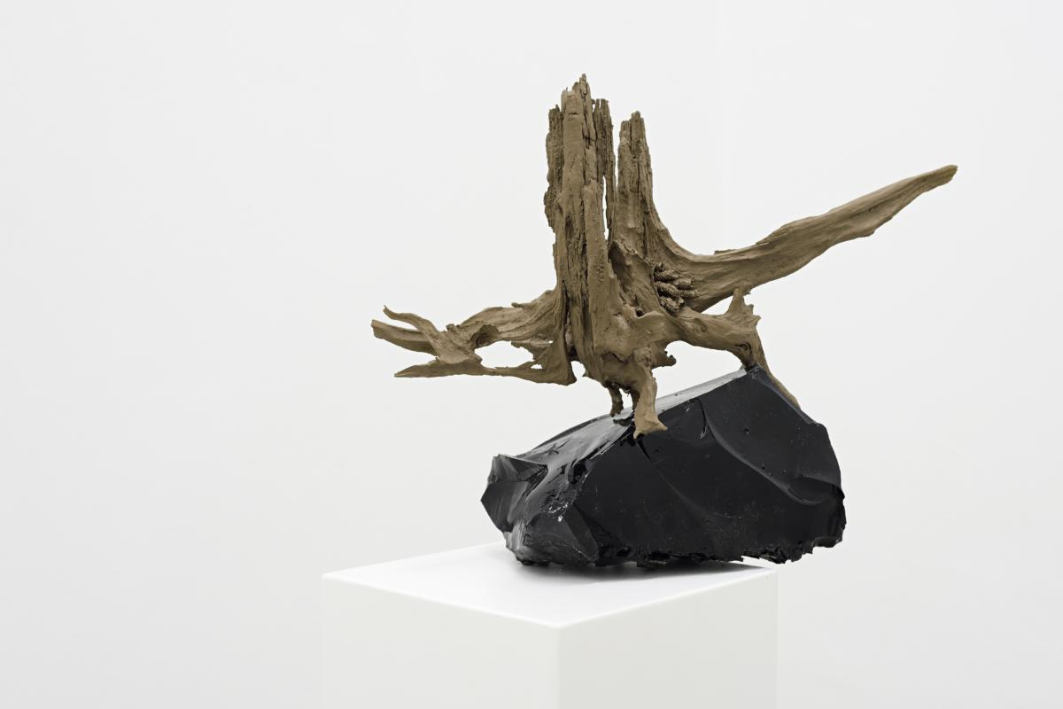 'Biotechnology Garageband Phase' by Adam Vačkář at Stone Projects