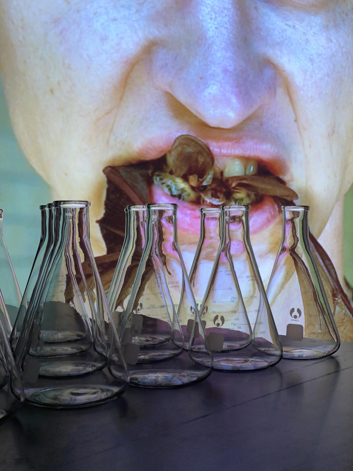 How One Artist Is Using Performance to Question the Monopoly of Big Pharma