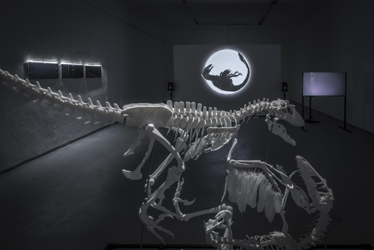 [EN/SK] 'Model for Extinction Survival: Take to the Sky' by András Cséfalvay at SODA Gallery