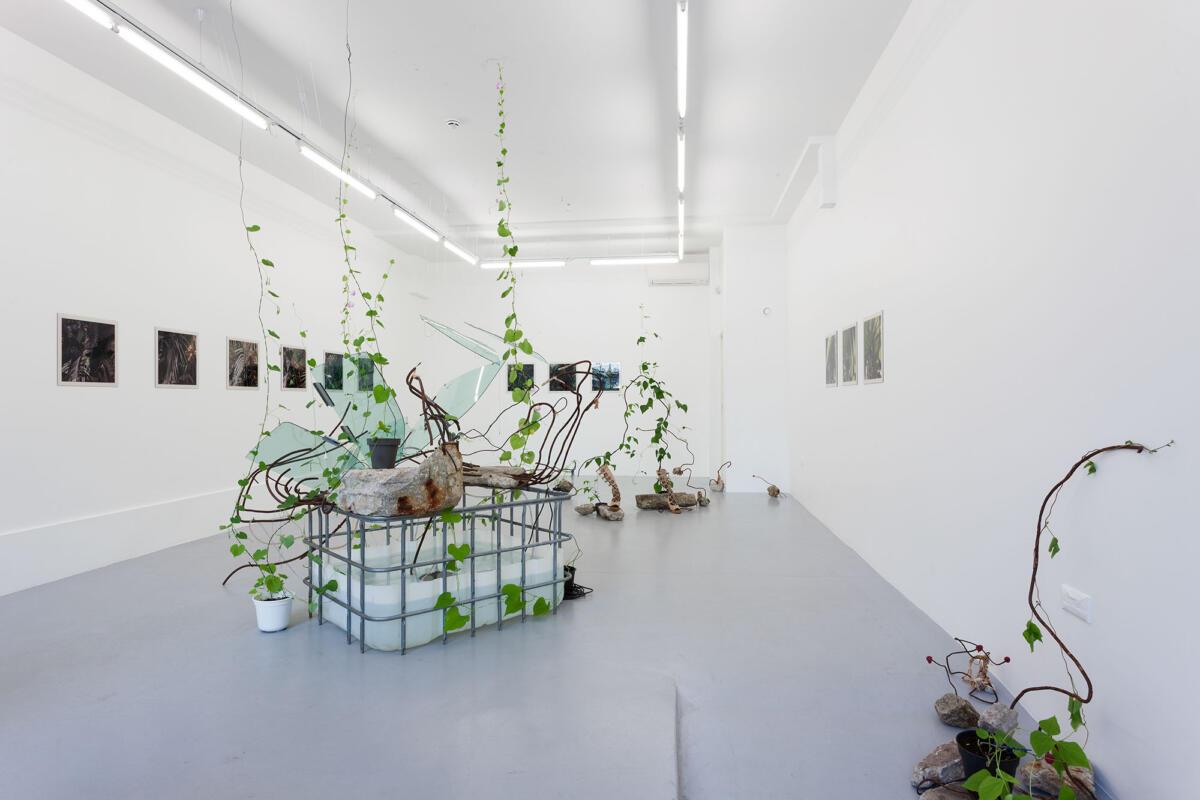 [EN/EE] 'Husa' by Mari-Leen Kiipli & Paul Kuimet's 'Crystal Grid' at Kogo Gallery