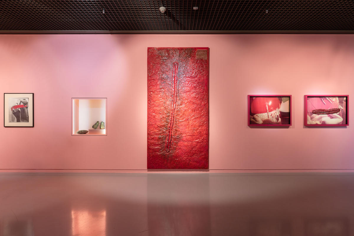 The Body, Eroticism, Screws, and Vagina Dentata: On the Work of Teresa Tyszkiewicz