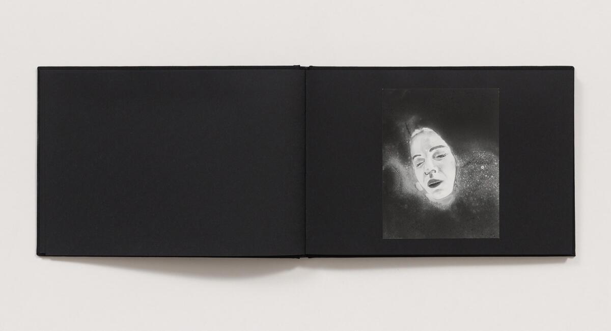 Aneta Grzeszykowska, 'Negative Book' (2013)