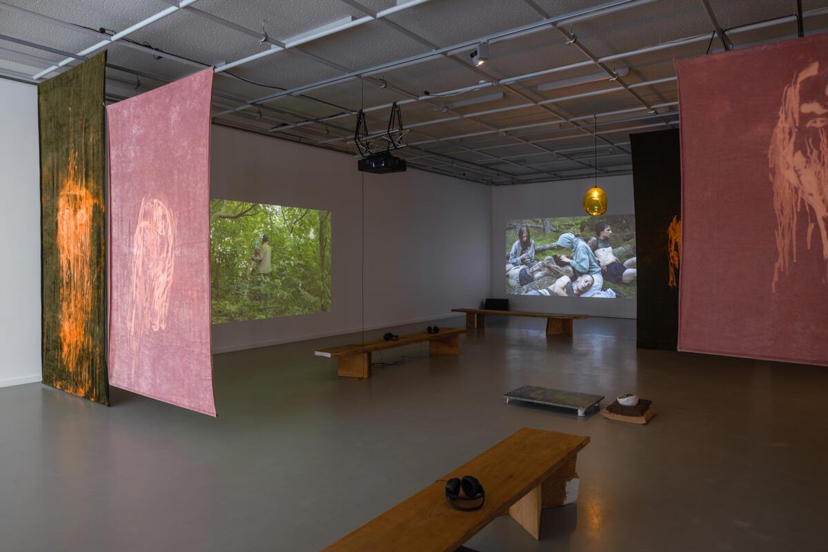 [EN/LT] 'The Spectral Forest' at Nida Art Colony
