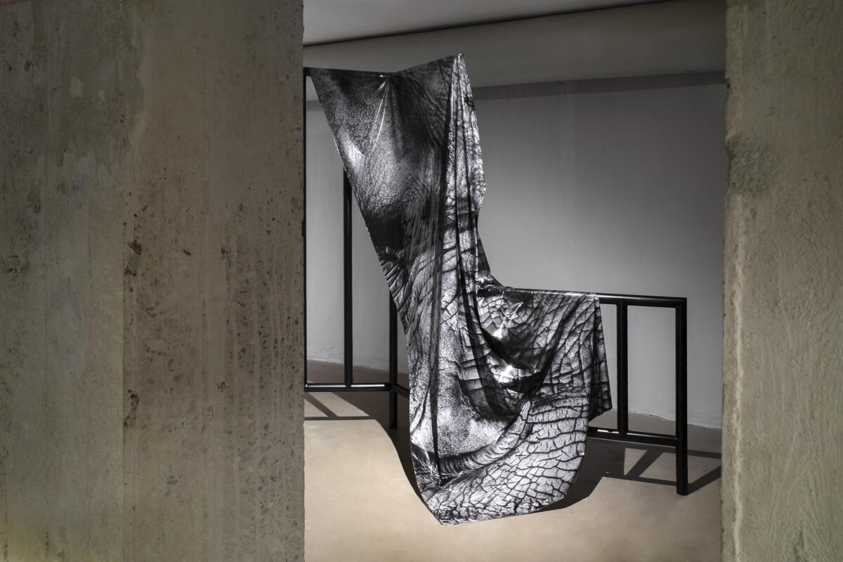 [EN/PL] 'Territory' at Wrocław Contemporary Museum