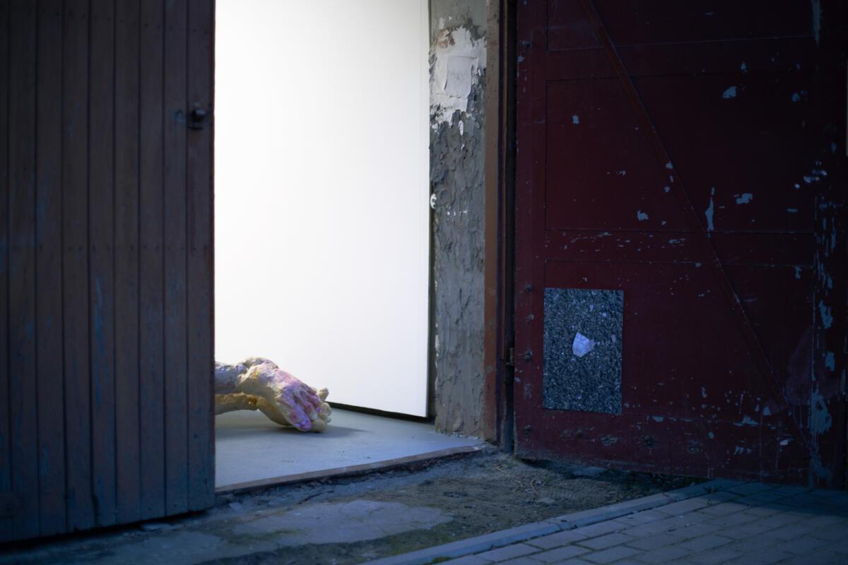 'Skin is Soiled, Blood is Spoiled'. Sebastian Winkler in Conversation
